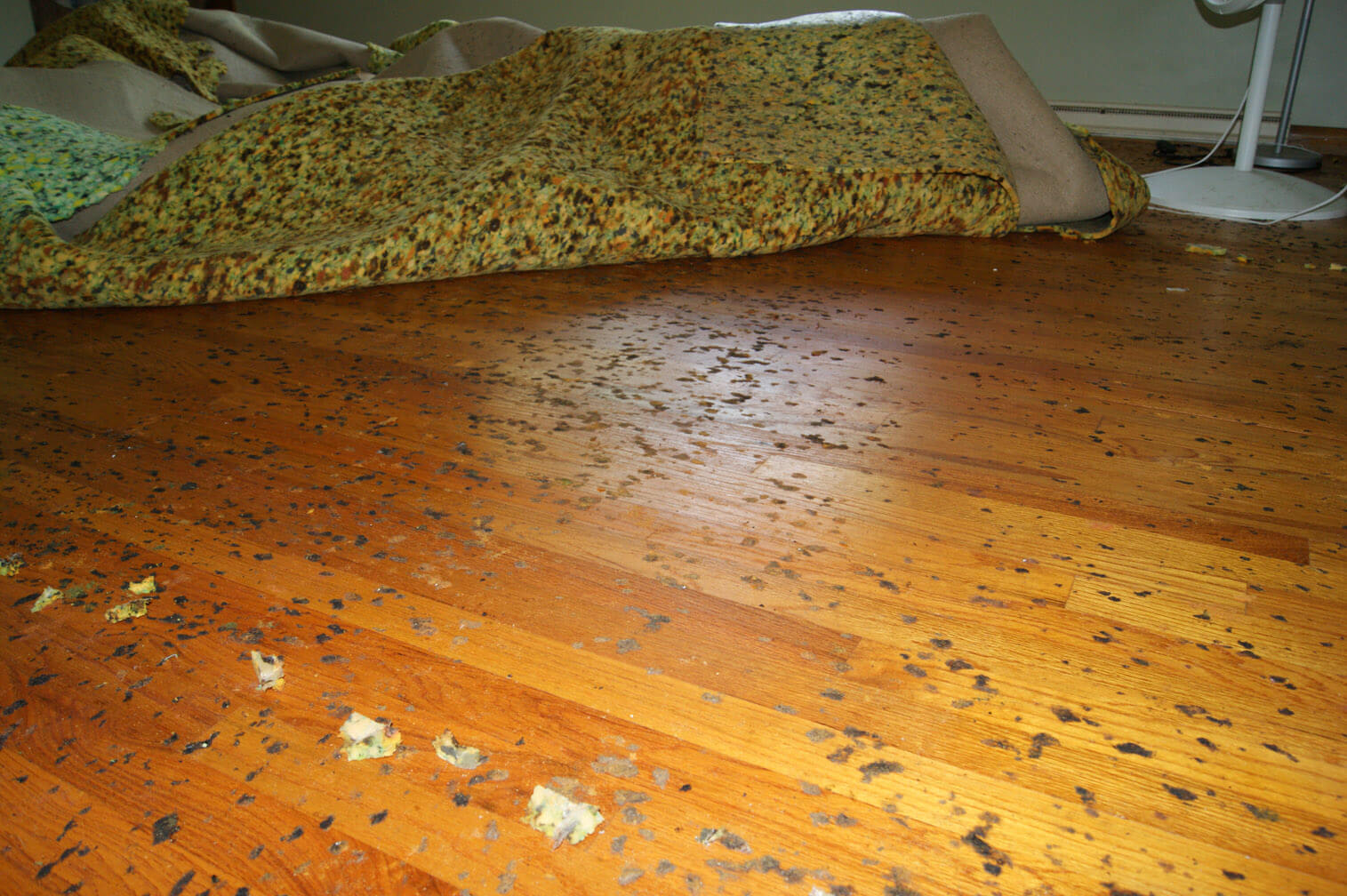Sticky Mess Floor